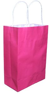 X25 Hot Pink Paper Gift Carry Tote Party Bags Handles Medium 200 x
