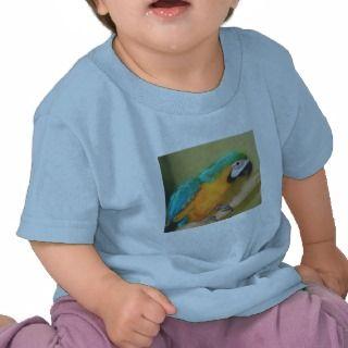 Blue Gold Macaw Parrot Infant Shirt