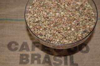 Green Coffee Bean Brazilian Robusta 17 lb Included Shipping