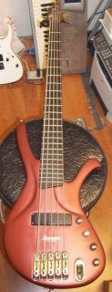 Ibanez Ergodyne 5 String Electric Bass Guitar Eda 905