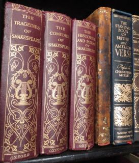 Magnificent 42 Book Antique Leather Premium Bound Library Lot Limited