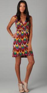 alice + olivia Alameda Ikat Print Dress