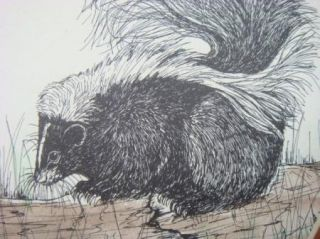 Suzy Stewart Signed Limited Edition Skunk Print w COA