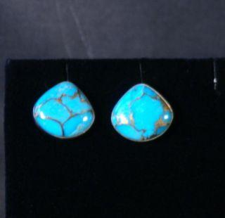 Jay King MINE FINDS Kingman Turquoise w/ Bronze Matrix Earrings