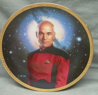 Star Trek Captain Jean Luc Picard Hamilton Collector Plate