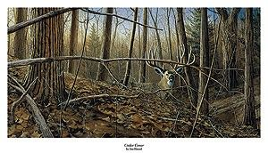 Jim Hansel Under Cover Big Buck Deer Print 33 x 17