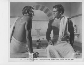 Laurence Olivier John Gavin barechested Vintage Photo