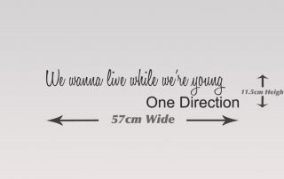 One Direction Wall Quote Wall Sticker Live While We're Young Wall Sticker 25