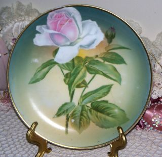 Selb Bavaria Vintage Plate with Gorgeous Pink Rose Green 8 3 8