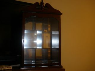 LARGE WALL CURIO CABINET SHADOW BOX DISPLAY CASE CHERRY WOOD GLASS