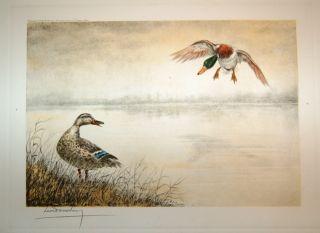 Signed Leon Danchin Color Duck Landing Print RARE