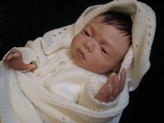 Reborn Doll Kit Kaylee by Linda K Smith L E 295