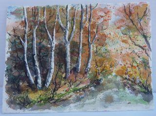 Sweet Little Fall Woodland Scene Birch Trees by Schmitz
