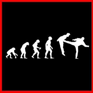 Martial Arts Karate Sambo Muay Thai Evolution T Shirt