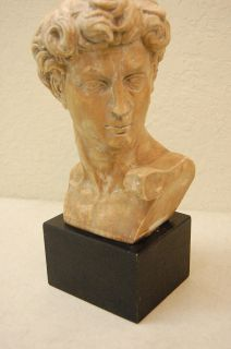 Austin Productions Inc Michelangelos David Bust Sculpture