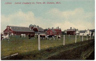 Mount Mt. Clemens, Michigan, DETROIT CREAMERY DAIRY MILK FARM, 1915