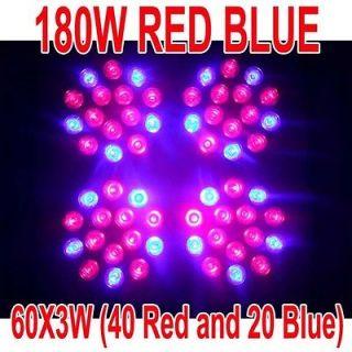 180W LED RED BLUE Hydroponic Grow Plant Light 3W Lamp Veg Flower
