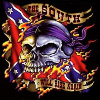 THE SOUTH WILL RISE AGAIN REBEL SKULL FLAG BIKER T SHIRT M TO 5X