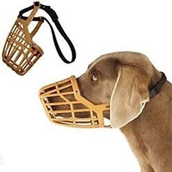 Guardian Gear DOG Quick Fit/Release Training Safety HEAVYDUTY BASKET