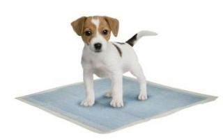 Plaza Original Pet Dog Potty Training Pads,Medium,10 0pk, Wee Wee Pads