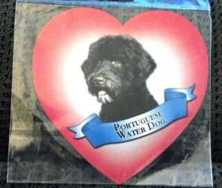 Heart Shaped Portuguese Water dog 5 Magnet