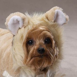 Casual Canine Lil Lion Halloween Dog Costume Pet Puppy Clothes Apparel