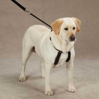 Dog anti pull Harness for gentle training stops difficult pet pulling