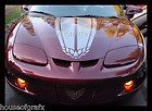 Universal Hood Stripe Bird Phoenix Decal decals graphic GT Pontiac
