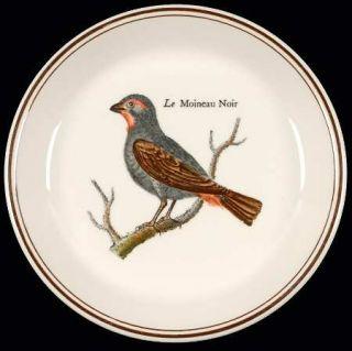 Villeroy & Boch Paradiso (Brown Trim & Band) Coaster, Fine China Dinnerware   Va