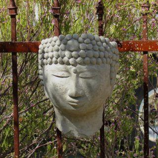 Designer Stone Buddha Head Wall Planter Multicolor   2169