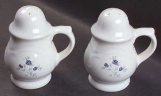 Pfaltzgraff Poetry Glossy Stove Top Salt & Pepper Set, Fine China Dinnerware   G