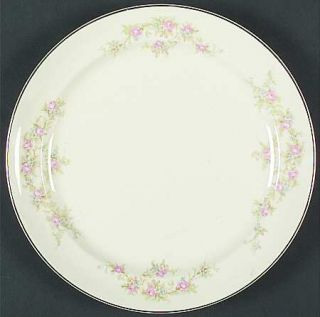 Taylor, Smith & T (TS&T) 1697 Smooth Dinner Plate, Fine China Dinnerware   Pink