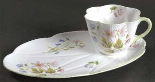 Shelley Wild Anemone Snack Plate & Cup Set, Fine China Dinnerware   Dainty,Pink